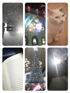 collage-1451526874015.jpg